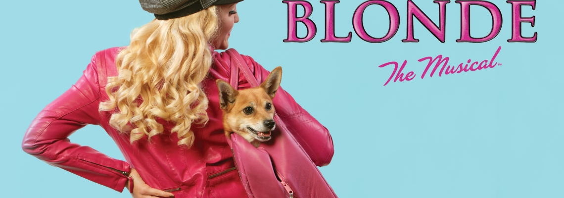 Senior musical theatre major Lawson Young as Elle in CCM's production of LEGALLY BLONDE, playing Oct. 23 - Nov. 2, 2014. Photography by Mark Lyons.